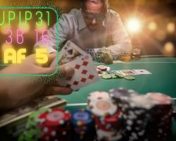 High Stakes Online Poker